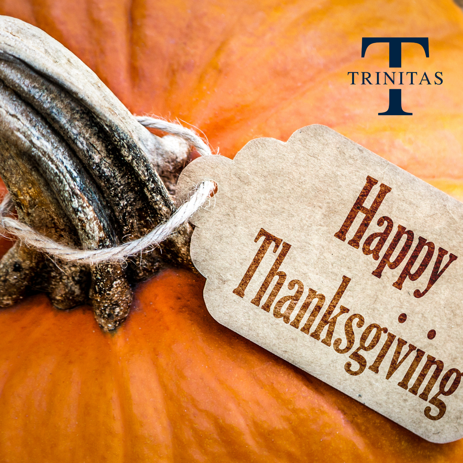 Happy Thanksgiving, Neighbors!